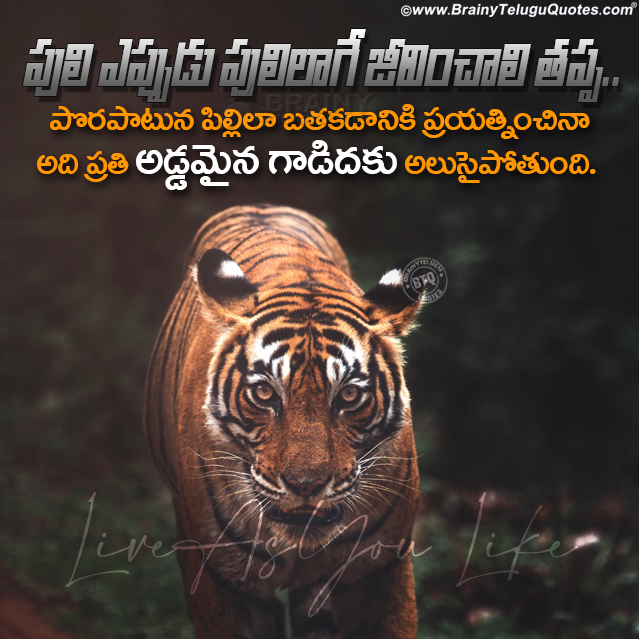 telugu quotes on life, best life changing thoughts, whats app dp images with self success thoughts
