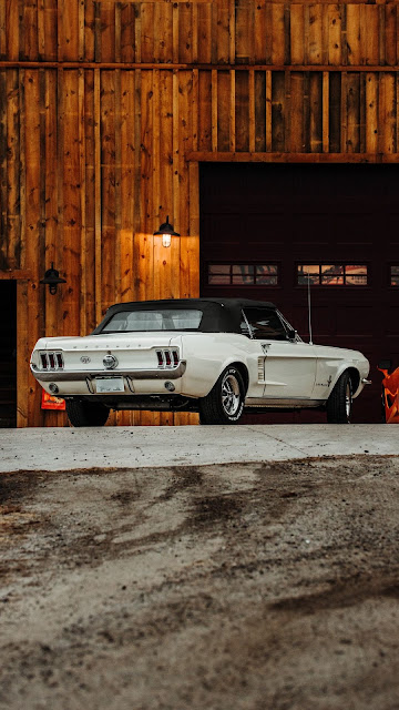 Vintage Ford Mustang, white car, parking, rear view