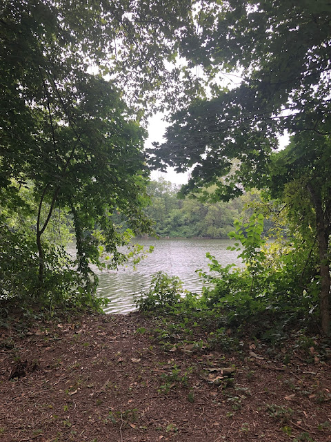 A peek through the trees at the Schuylkill River