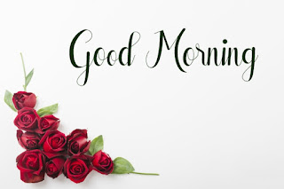 Good Morning Royal Images Download for Whatsapp Facebook77