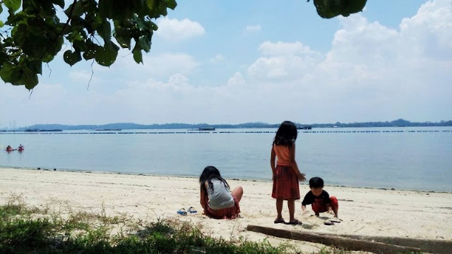 Pasir Ris Park is a beach park located in the eastern part of Singapore
