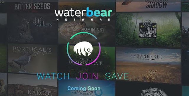 Prince Harry is interviewed for newly launched Environmental Streaming Network 'WaterBear'