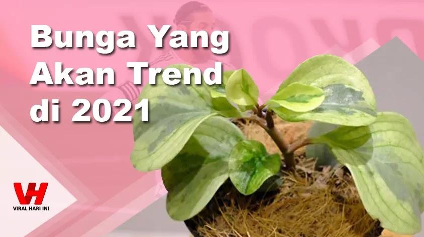 Bunga Trend 2021
