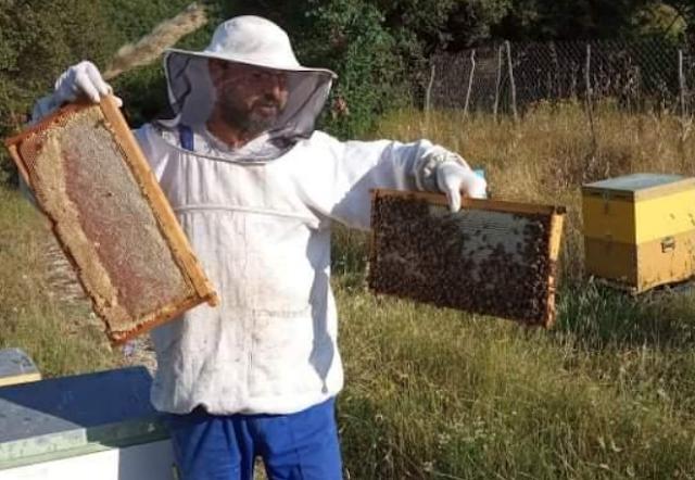 Πωλείται μέλι κουμαριάς στην Άρτα