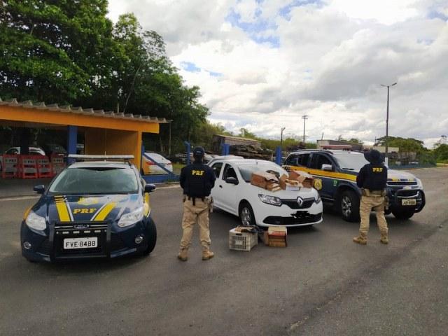 PRF prende três pessoas por tráfico de drogas no Vale da Ribeira