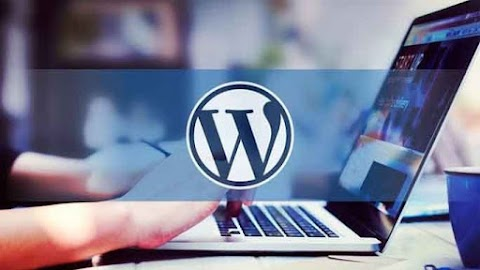 10 Tips to Creating a WordPress Website You Always Wanted