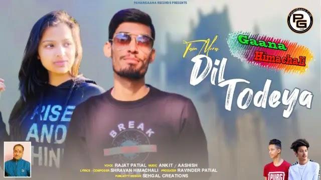 Tain Mera Dil Todeya By Rajat Patial Song mp3 Download - Himachali Pahari Song