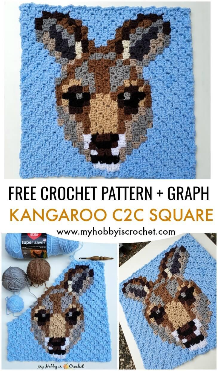 Kangaroo C2C Square - Free Pattern
