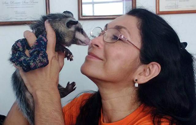 Falleció la ambientalista Dra. Rosario Sosa Parrra, defensora de las zarigüeyas