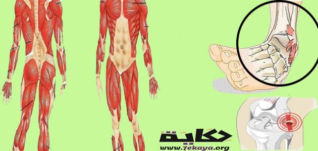 ما هو تمزق الأربطة وما أسبابه وأعراضه وطرق العلاج