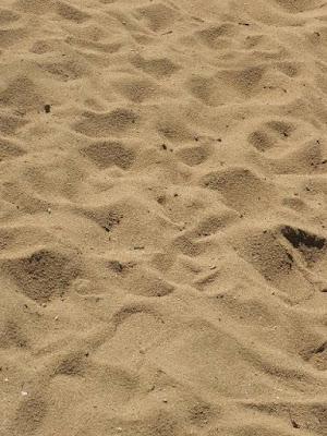 هل التربة الرملية مناسبة لتأسيس المباني والمنشآت تحت تأثير الزلازل؟