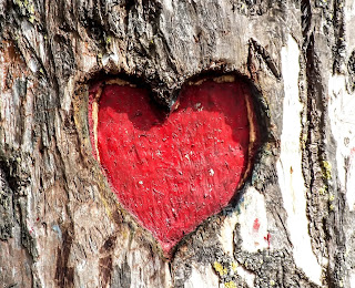 Hearts DP