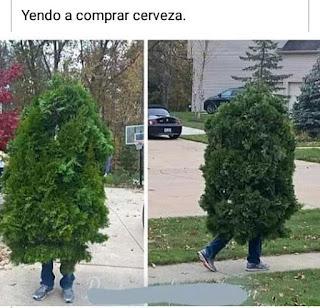Hombre vestido de arbusto