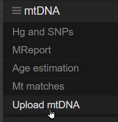 Upload mtDNA to YFull