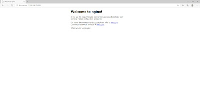 service nginx hit with browser