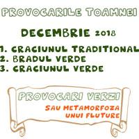 http://www.provocariverzi.ro/2018/12/provocarile-toamnei-decembrie-2018.html
