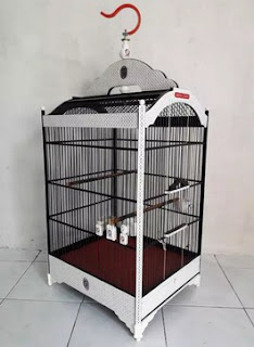 Harga Sangkar Burung Ebod Jaya 2020 Murah Paling Lengkap