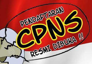 Pendaftaran CPNS Daerah 2018