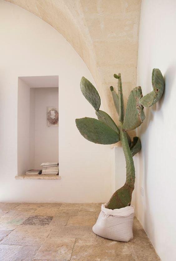 21 Amazing Ways to Decorate With Plants- design addict mom