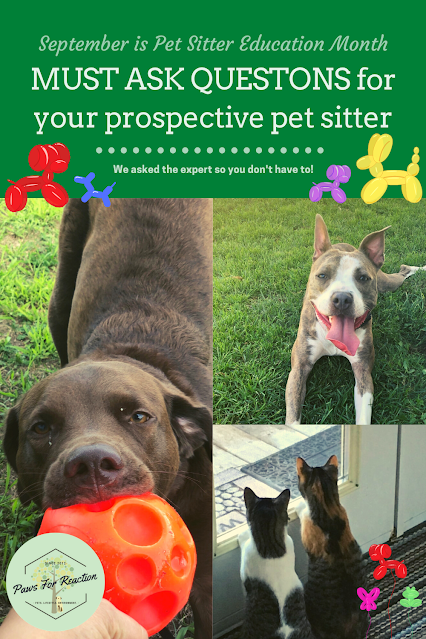 MUST ASK QUESTONS for your prospective pet sitter for September Pet Sitter Education Month