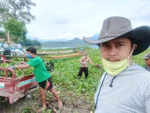 Gara-gara mengganggu, pemuda Purwakarta sulap eceng gondok jadi pakan ternak