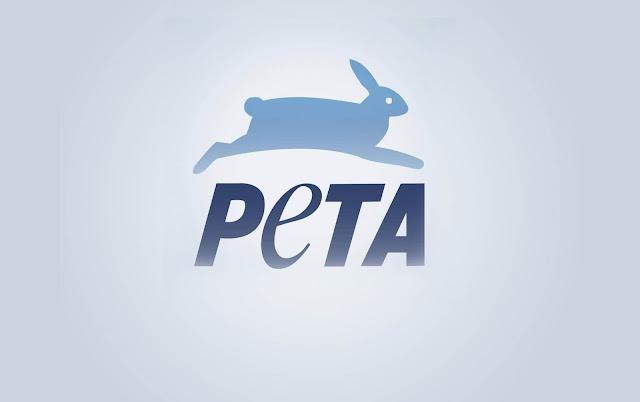 PETA critica a la streamer Alinity por maltratar a su gato.