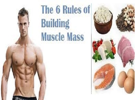 The 6 Rules to Build Muscle Mass