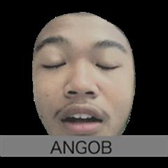 ANGOB