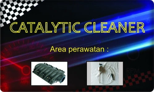 catalytic cleaner
