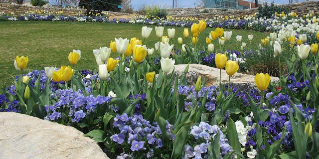 Gardens in  Falls Park, Greenville County SC