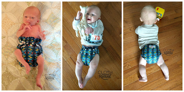 AppleCheeks Cloth Diaper Revival