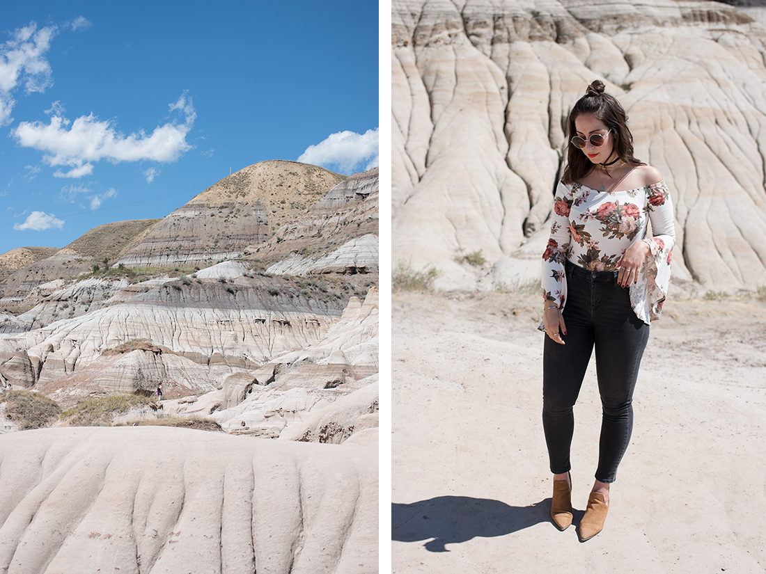 Desert Rose — Adventures in Fashion