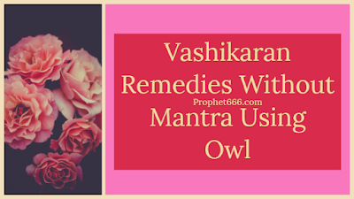 Vashikaran Totke Without Mantra Using Owl