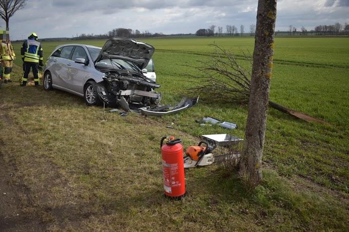Mercedes reißt Baum um