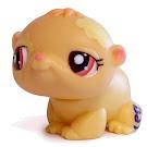 Littlest Pet Shop Small Playset Hamster (#1755) Pet