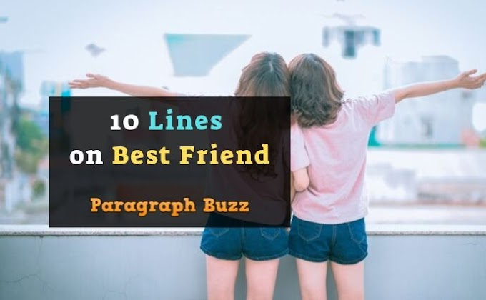 10 Lines on Best Friend in English