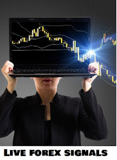 What are forex signals