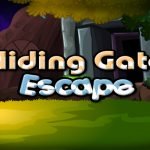 Sliding Gate Escape