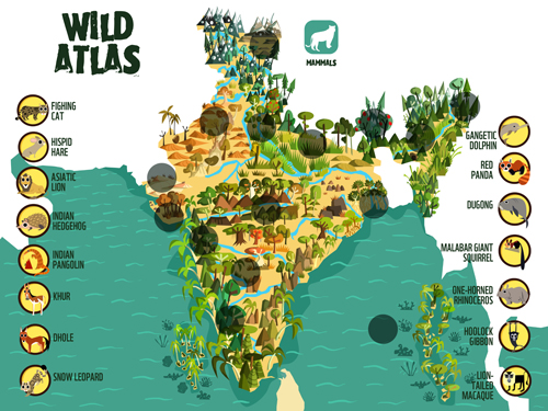 Green humour wild atlas interactive map game for wwf presenting wild atlas an interactive web game i designed for wwf indias new education portal one planet academy httpacademywwfindia gumiabroncs Image collections