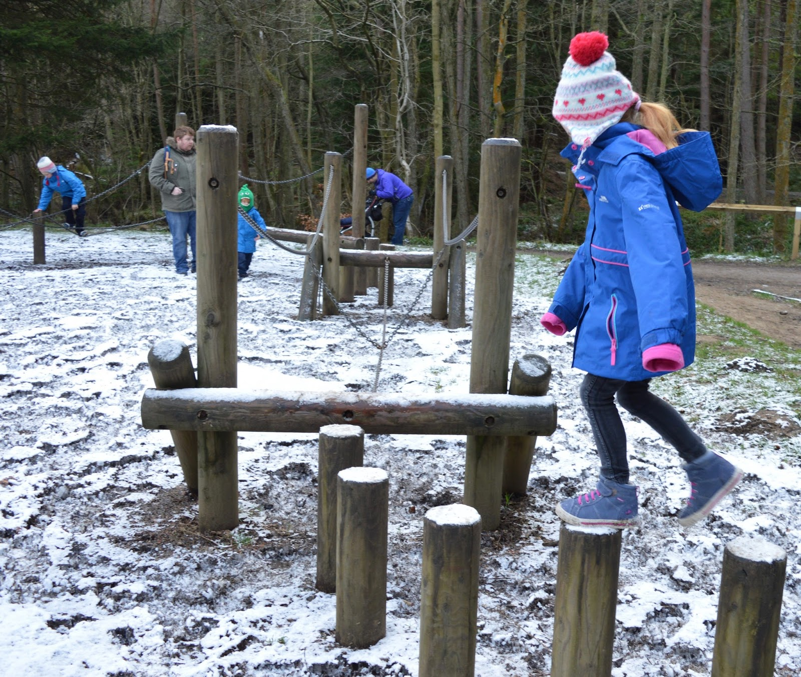 50+ Family Walks & Trails to try across North East England  - Hamsterley Forest