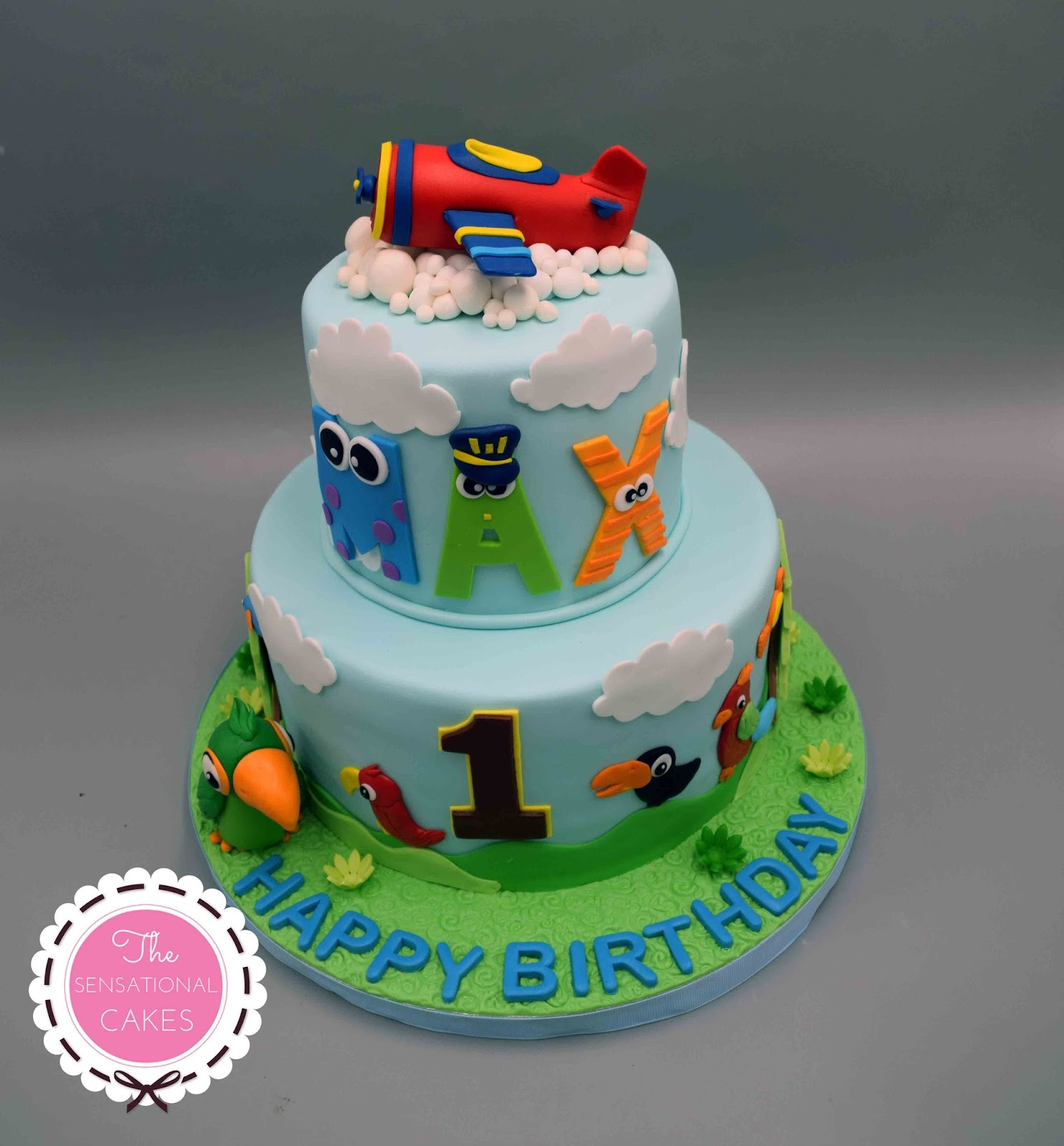 The Sensational Cakes Airplane Theme Baby 1st Birthday 3D Cake