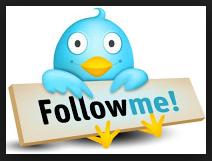 Cara Membuat Widget Followers Twitter di Blog