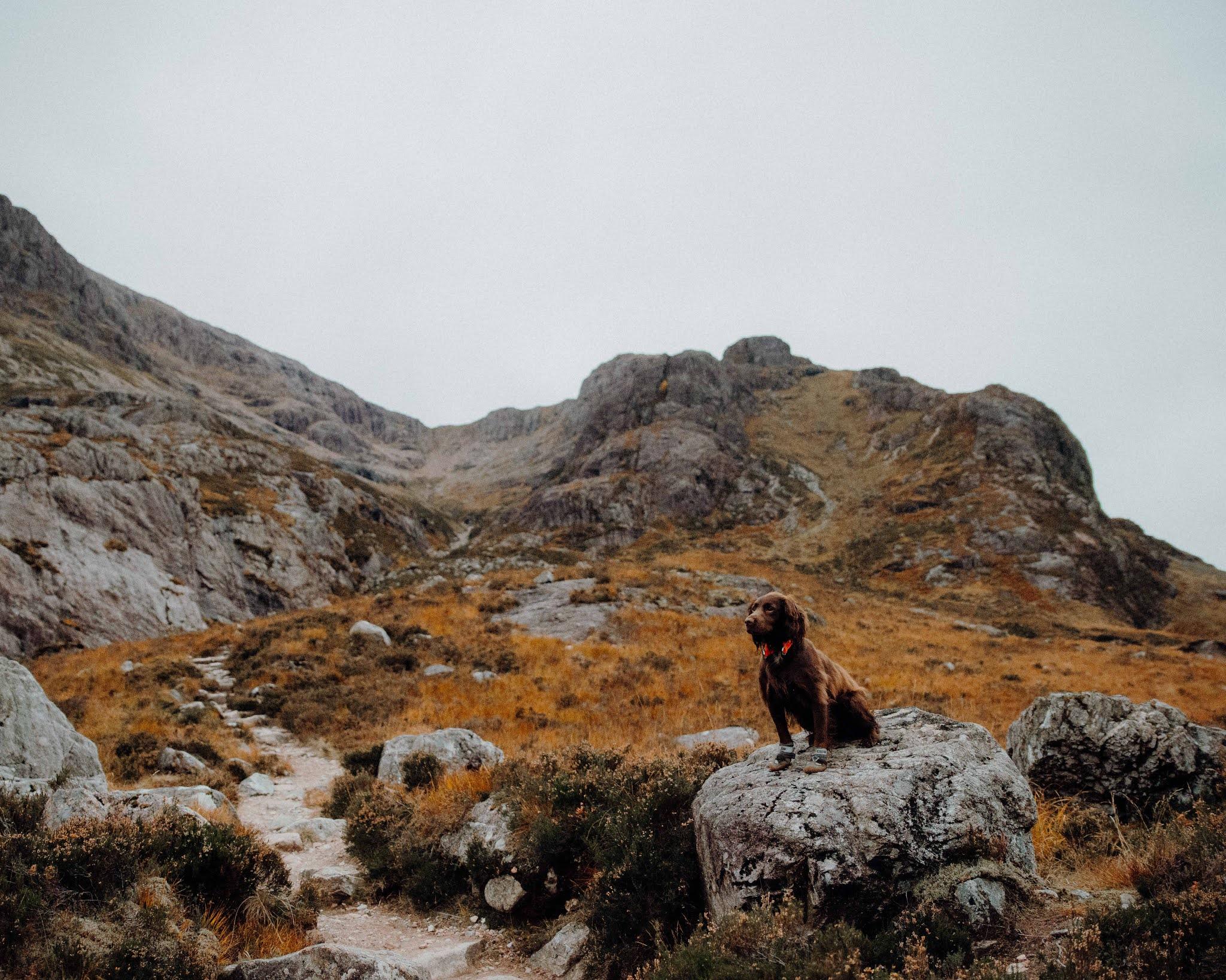 glencoe mountain munro autumn scotland liquid grain