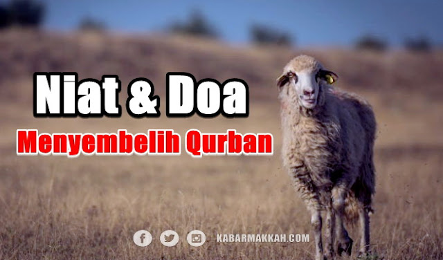 Niat & Doa Menyembelih Hewan Qurban Sesuai Sunnah Rasulullah, Perhatikan Baik-baik