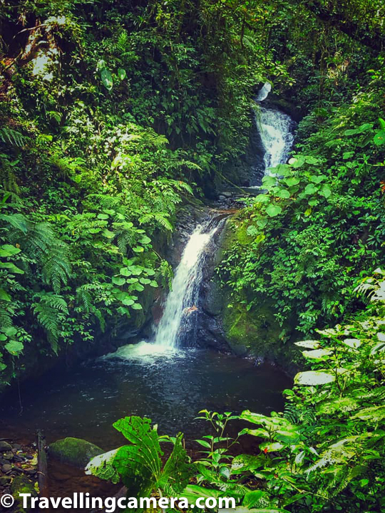 7. Enjoy some of the waterfalls around Monteverde :    The San Luis waterfall is located on the outskirts of the Santa Elena Cloud Forest Reserve and is one of the most popular waterfalls around Monteverde town. There are several ways to get to this 330 feet high waterfall - you can hike, ride a horse, or take a taxi to the San Luis research station and hike the final 45 minutes down. Once you make it to the waterfall, you can take a refreshing dip in the cold waterfall pool, have a picnic, or just admire the immense beauty of the falls and surrounding forest.