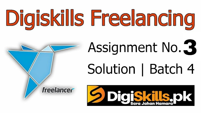 Digiskills Freelancing Exercise No. 3 Solution Batch 4 | FRL101 Exercise No. 3 Solution | Study Planet