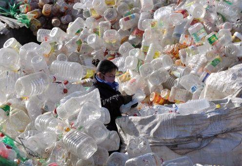 La cadena de supermercados Ekoplaza presenta 700 productos envasados en biomateriales compostables.