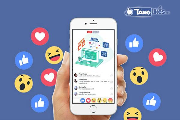 tang luot xem livestream