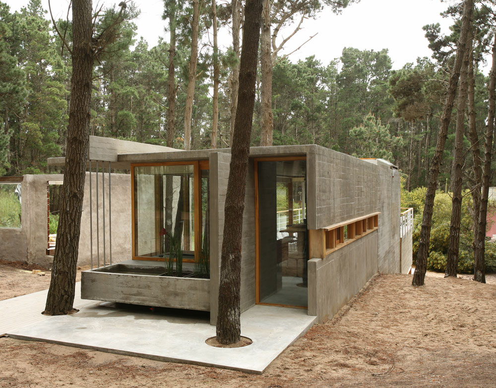 Organic architecture house among trees