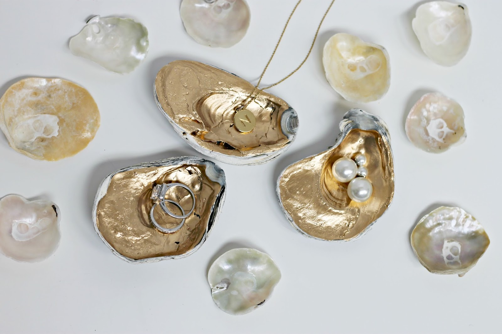 Diy gilded oyster shells shannon claire for Shell diy